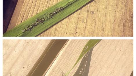 découpe et gravure sur végétaux